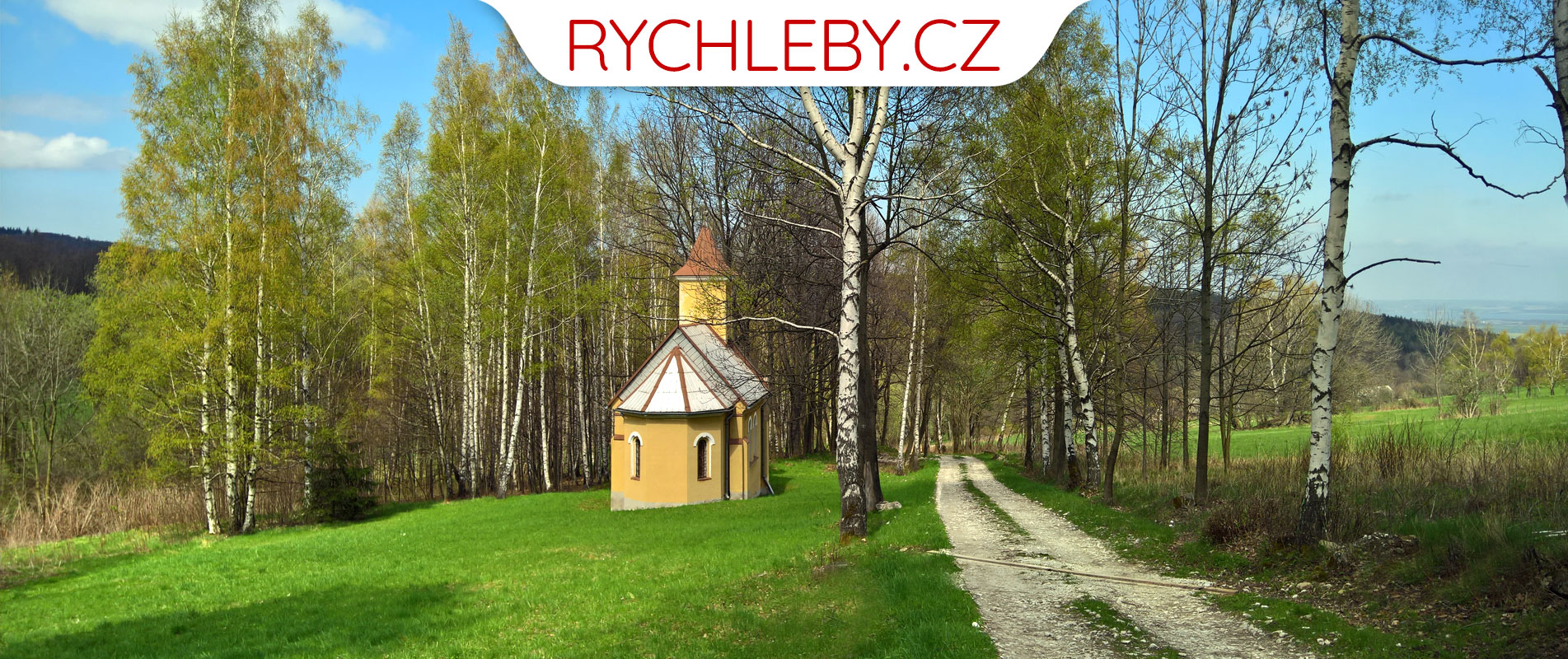 hlavicka_cerveny_dul_kostelik